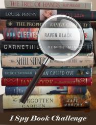 i-spy-book-challenge